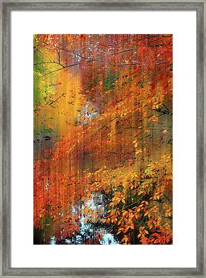 Framed Print featuring the photograph Autumn Cascade by Jessica Jenney