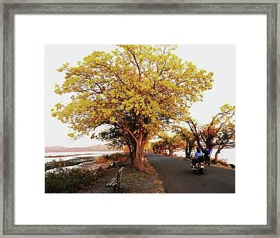 Autumn Causeway Framed Print