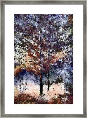 Autumn Cedars Framed Print by RC deWinter