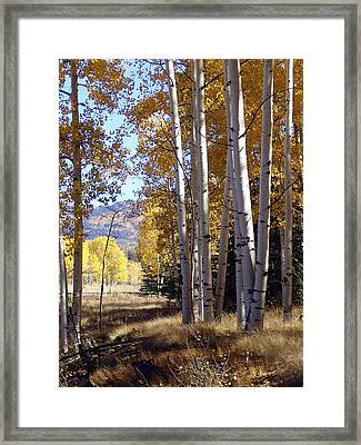 Autumn Chama New Mexico Framed Print by Kurt Van Wagner