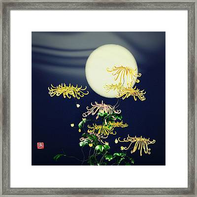 Autumn Chrysanthemums 4 Framed Print