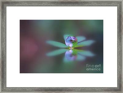 Autumn Clover Droplet Framed Print