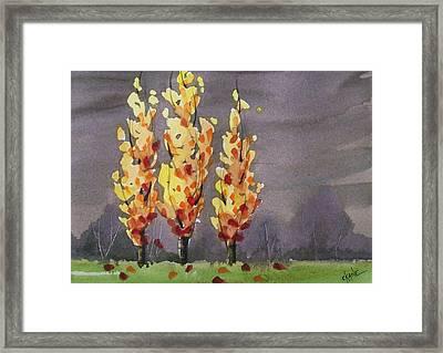 Autumn Cold Rain Framed Print by Christine Camp