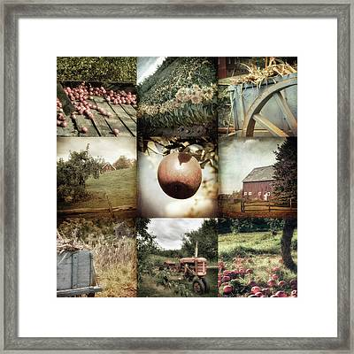 Autumn Collage - Autumn In New England Framed Print