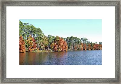 Framed Print featuring the photograph Autumn Color At Ratcliff Lake by Jayne Wilson
