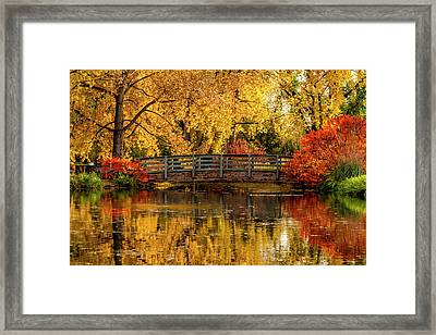 Autumn Color By The Pond Framed Print
