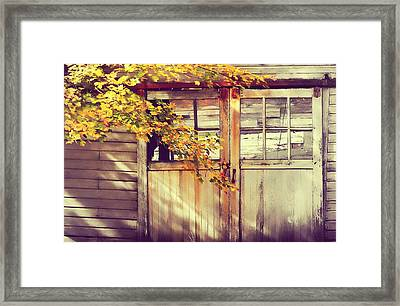 Autumn Color Framed Print by JAMART Photography