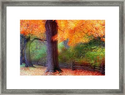 Autumn Color Maple Trees By Fence Line Framed Print by Panoramic Images