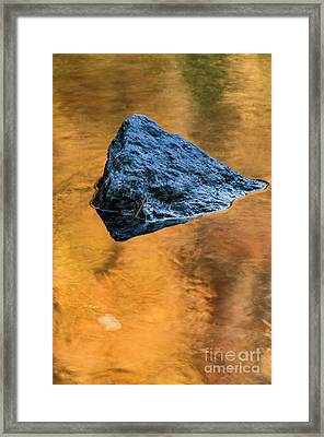 Framed Print featuring the photograph Autumn Color On Little River - D009990 by Daniel Dempster