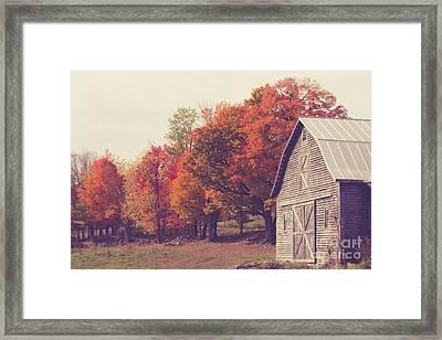 Autumn Color On The Old Farm Framed Print