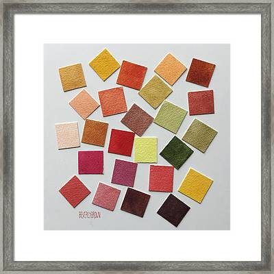 Autumn Color Palette Framed Print by Beverly Brown