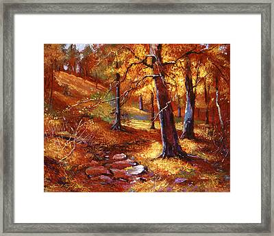 Autumn Color Palette Framed Print by David Lloyd Glover