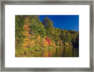 Autumn Color Trees Along Beauty Lake Framed Print