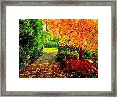 Autumn Colors Framed Print by Aron Chervin