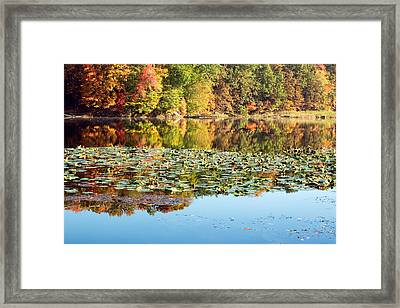 Autumn Colors Framed Print by Amanda Kiplinger