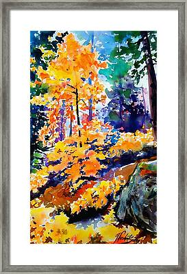 Autumn Colors At Balch Park Framed Print by Therese Fowler-Bailey