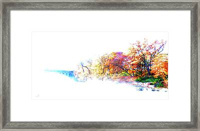 Autumn Colors Framed Print by Hannes Cmarits