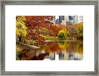 Autumn Colors In Central Park New York City Framed Print