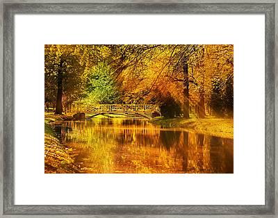 Autumn Colors Framed Print by Ivan Vukelic