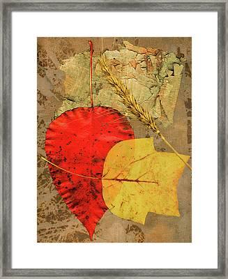 Framed Print featuring the painting Autumn Colors by John Dyess
