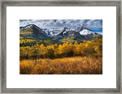 Autumn Colors On Mount Timpanogos Framed Print