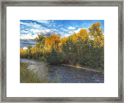 Autumn Colors On The Chama River Framed Print