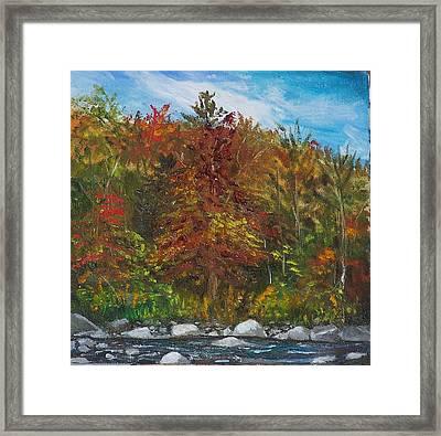 Autumn Colors Framed Print by Pamela Wilson