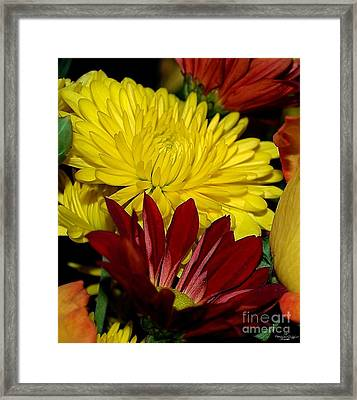 Autumn Colors Framed Print by Patricia Griffin Brett