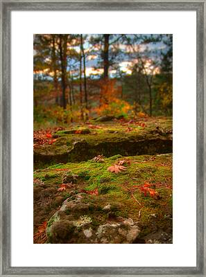 Autumn Colors Framed Print by Ryan Heffron