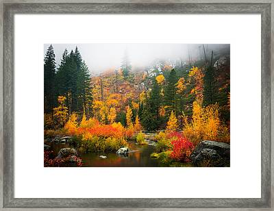 Framed Print featuring the photograph Autumn Colors Symphony by Dan Mihai