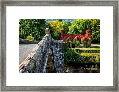 Autumn Colours Framed Print by Adrian Evans