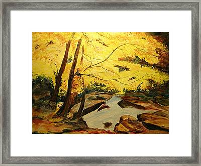 Autumn Colours Framed Print by Lizzy Forrester