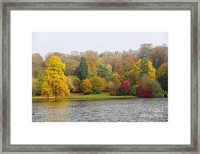 Autumn Colous Framed Print