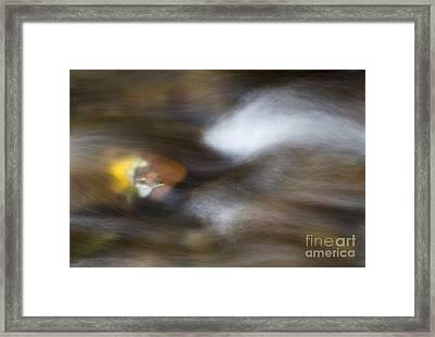 Autumn Concealed Framed Print
