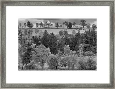 Autumn Country Bw Framed Print