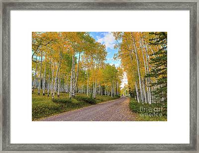 Framed Print featuring the photograph Autumn Country Road by Spencer Baugh