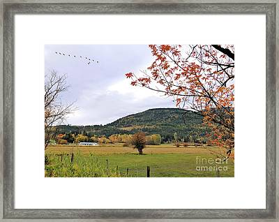 Autumn Country View Framed Print