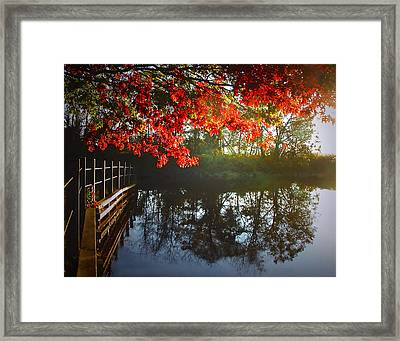 Autumn Creek Magic Framed Print