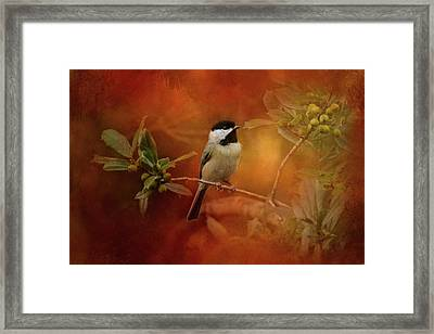 Autumn Day Chickadee Bird Art Framed Print