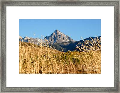 Autumn Day Framed Print by David Lee Thompson