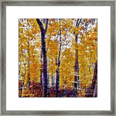 Autumn  Day In The Woods Framed Print