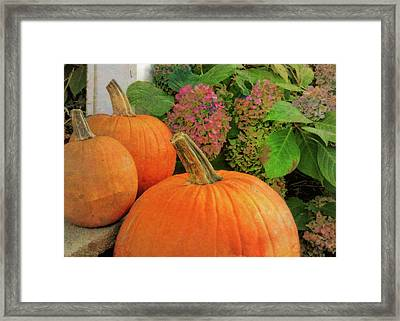 Autumn Decorations Framed Print by JAMART Photography