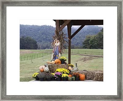 Autumn Display Framed Print by Linda A Waterhouse