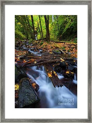 Autumn Downstream Framed Print