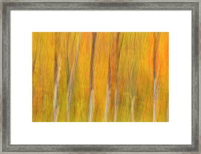 Framed Print featuring the photograph Autumn Dreams by Mike Lang