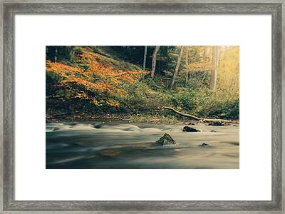 Autumn Dreamscape Framed Print