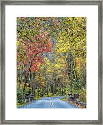 Autumn Drive Through Pisgah National Forest Framed Print by Donnie Whitaker