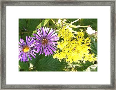 Autumn Duo Framed Print