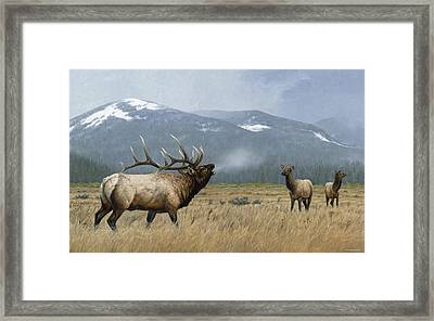 Autumn Echoes Framed Print