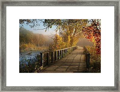 Autumn Emerging Framed Print